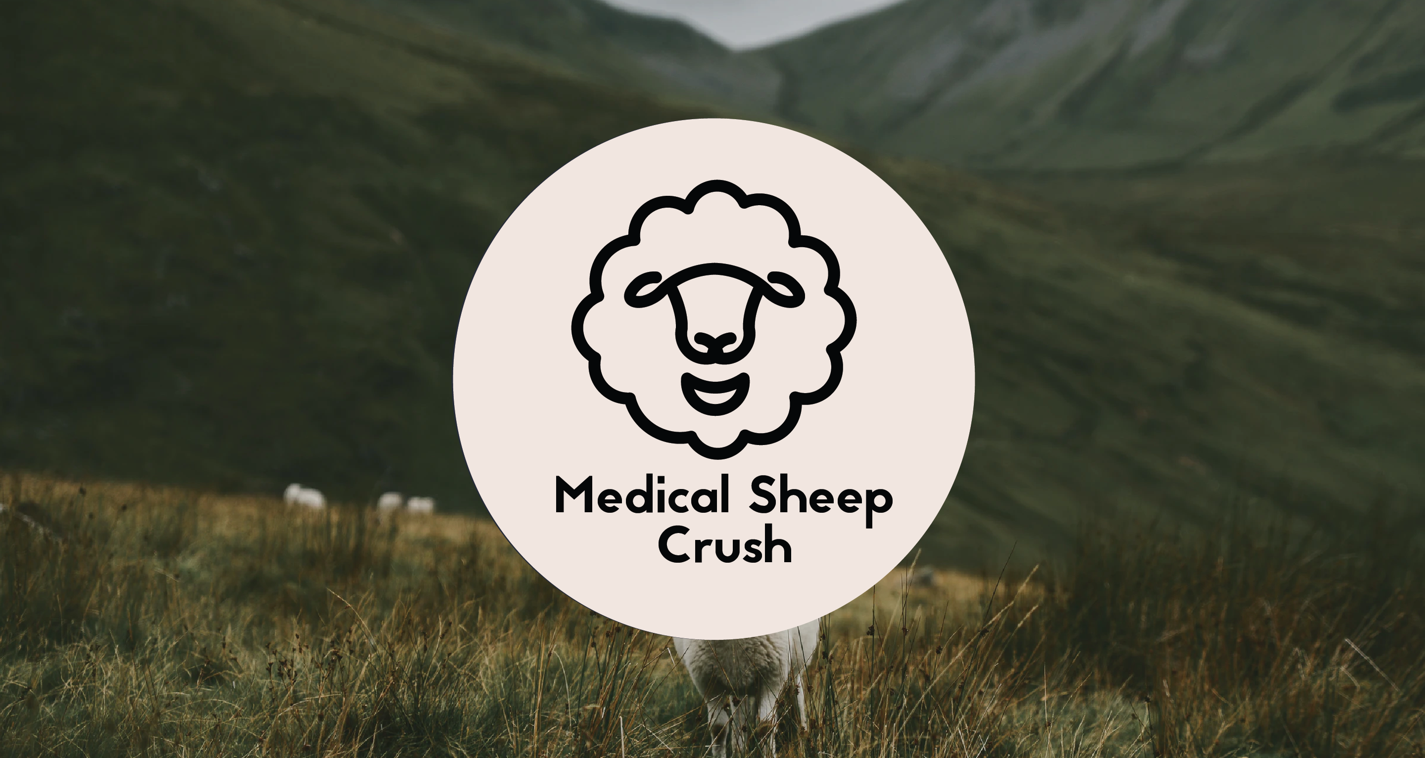 Medical Sheep Crush Image