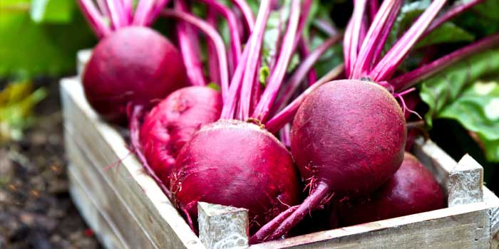 The Dirty Beetroot Image