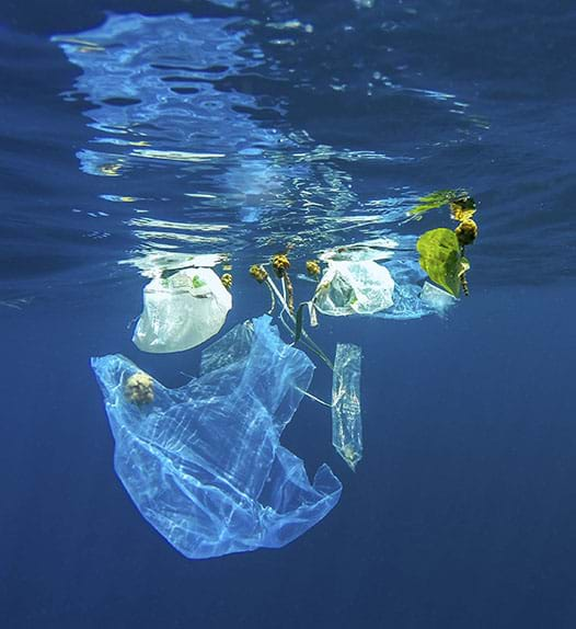 An image of plastic waste floating in the sea
